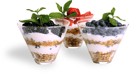La Yogurt Probiotic